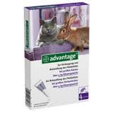 ADVANTAGE spot on macskának 4-8 kg között