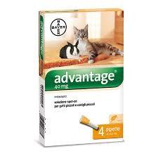 ADVANTAGE spot on macskának 4 kg alatt