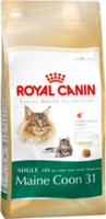 FBN MAINCOON ADULT     0,4 kg