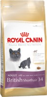 FBN BRITISH SHORTHAIR ADULT    2 kg.